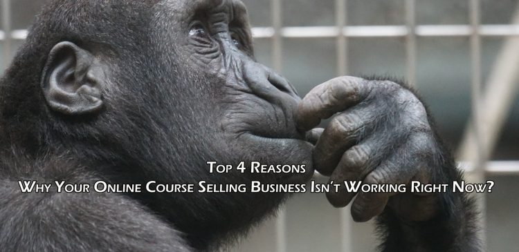 Top 4 Reasons - Why Your Online Course Selling Business Isn't Working Right Now