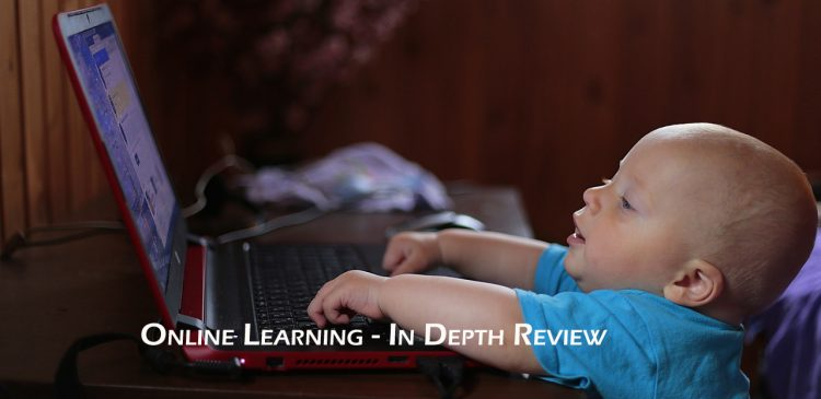 Online Learning In Depth Review